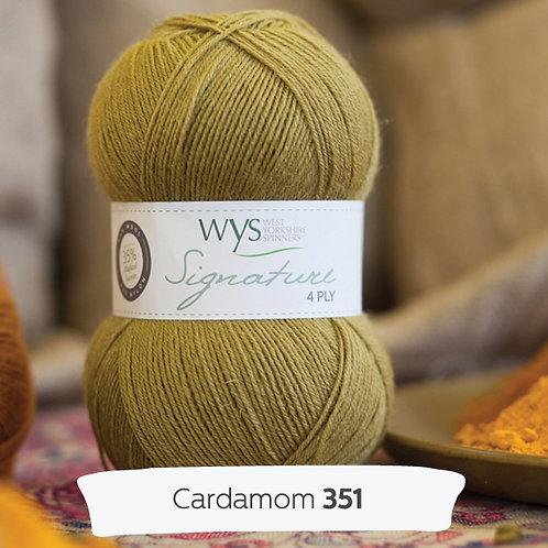 WYS 4 Ply襪線_Cardamom 351