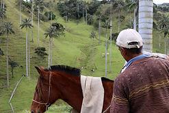 Voyages alternatifs en Colombie