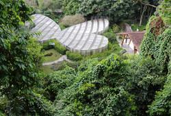 Jardin Botanique de Quindio