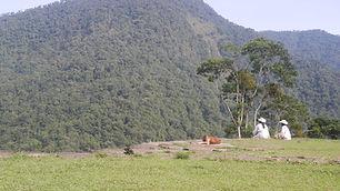 Los Archuacos-Colombie