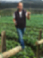 Horticulteur proche de Medellin