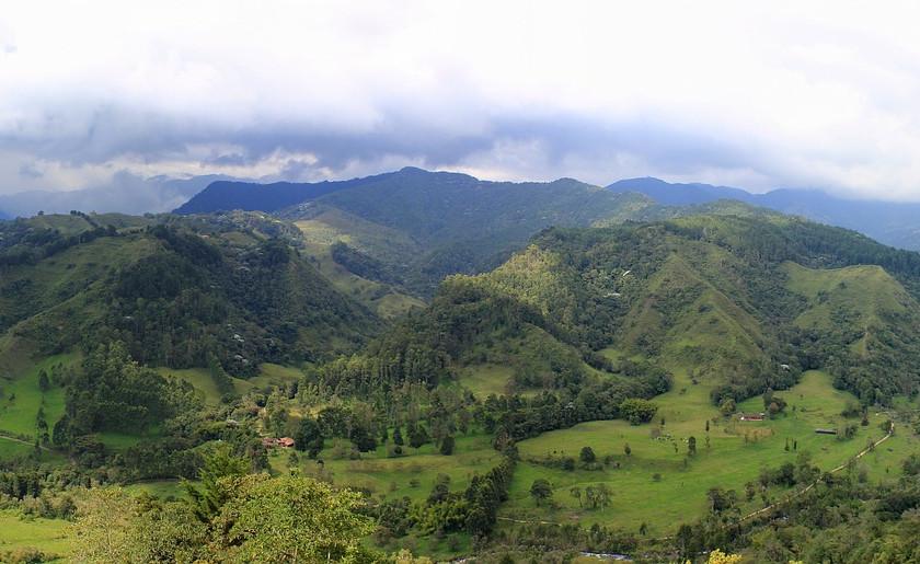 Montagnes de la région café