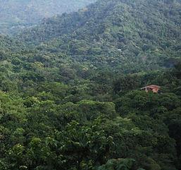 Minca, Colombie