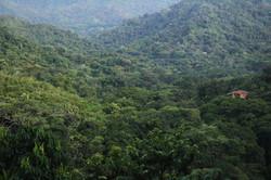 Minca, une destination nature pure