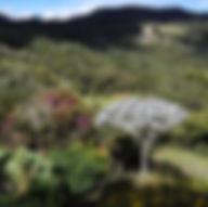 Tour Finca silletera d'Envigado