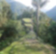 Cuidad Perdida en Colombie
