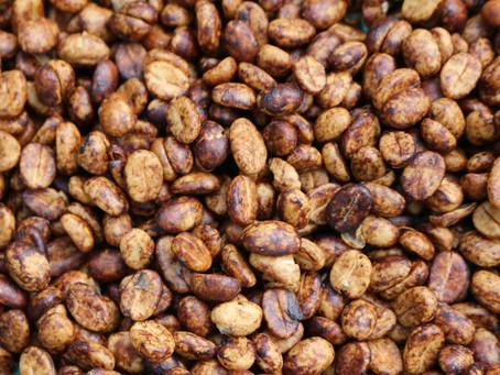 Que signifie un café lavé, honey ou naturel ?