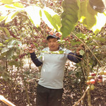 Luis, producteur café de Colombie