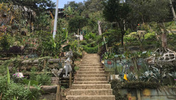 Jardins communautaires Cerros de los Valores