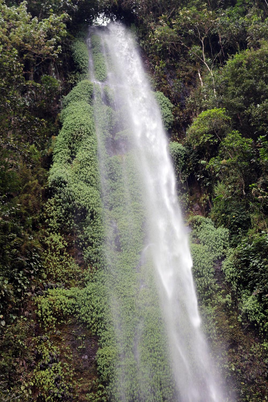 Cascades Otun Quimbaya en Colombie
