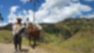 Agriculteur - San Félix