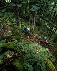 Mountain Bike Monday Ride