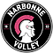 logo-narbonne_214108332.png