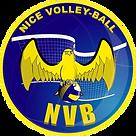 logo-nice_1566816973.png