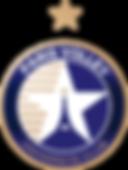 Logo Paris Volley.png