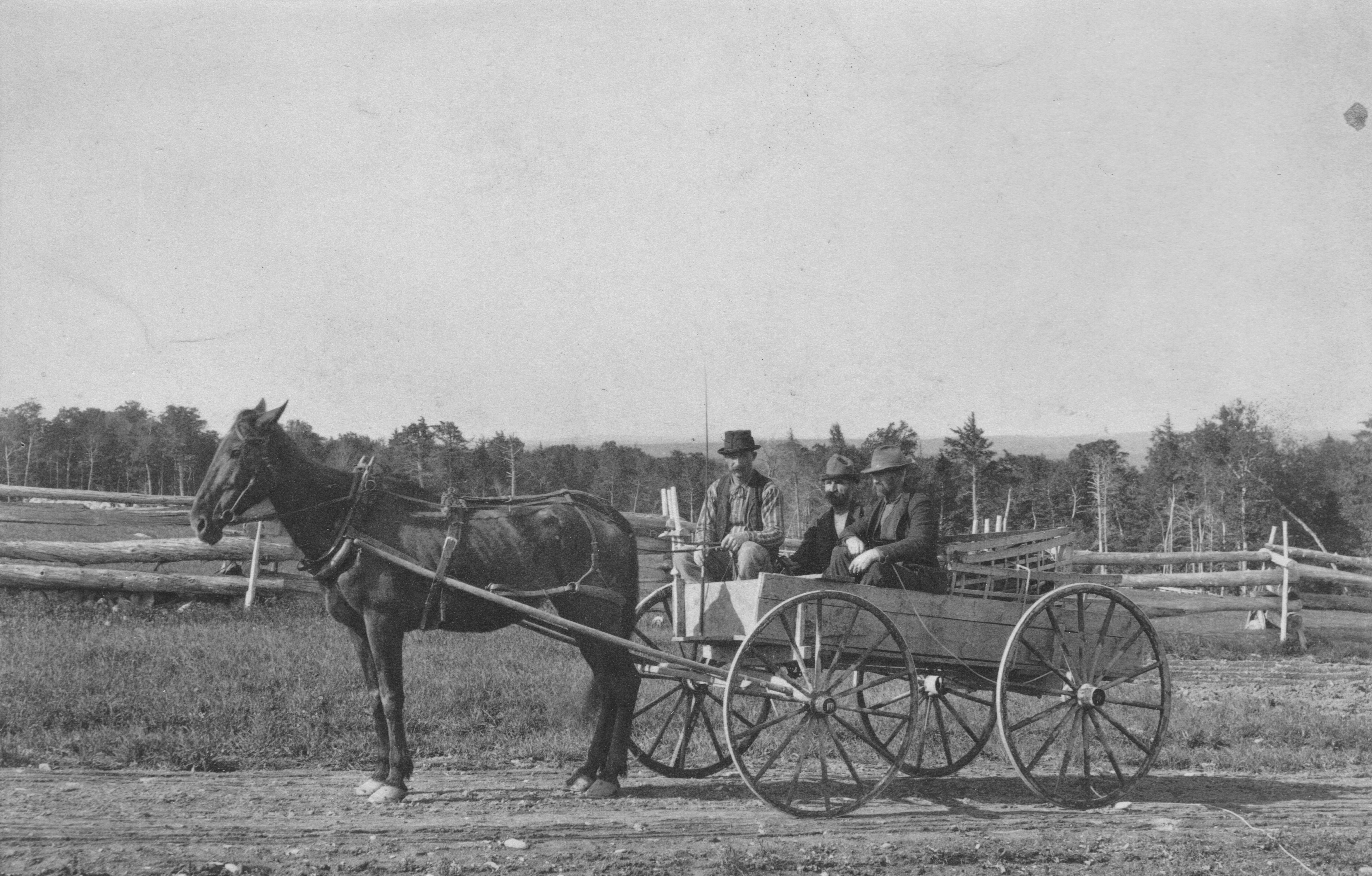 Walter Mansur, E.B. White and driver