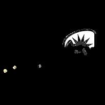 energy preto simbolo.png