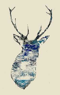 Stag1