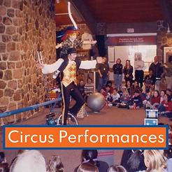 CircusPerformances.png