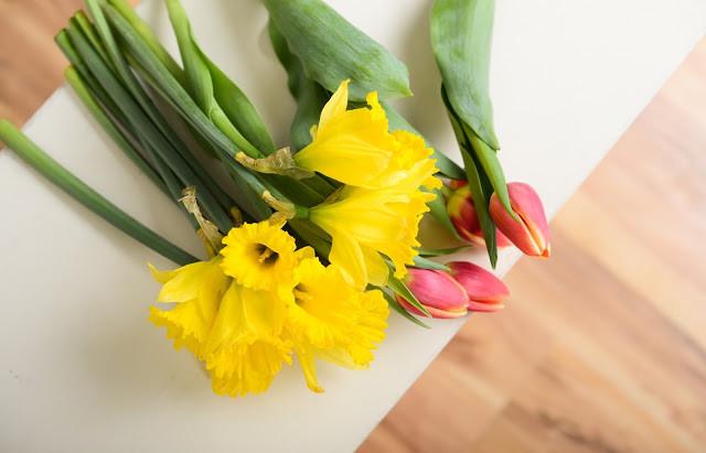 No Daffodils Here