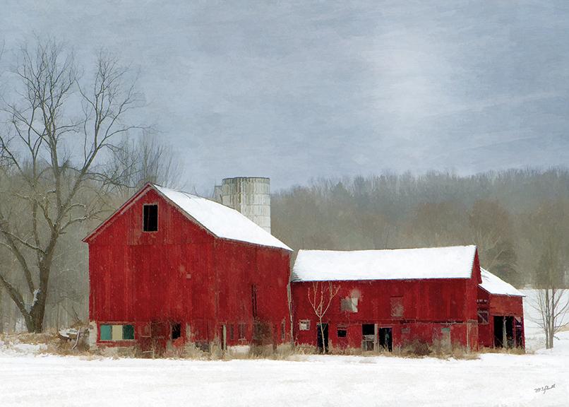 Country Winter II
