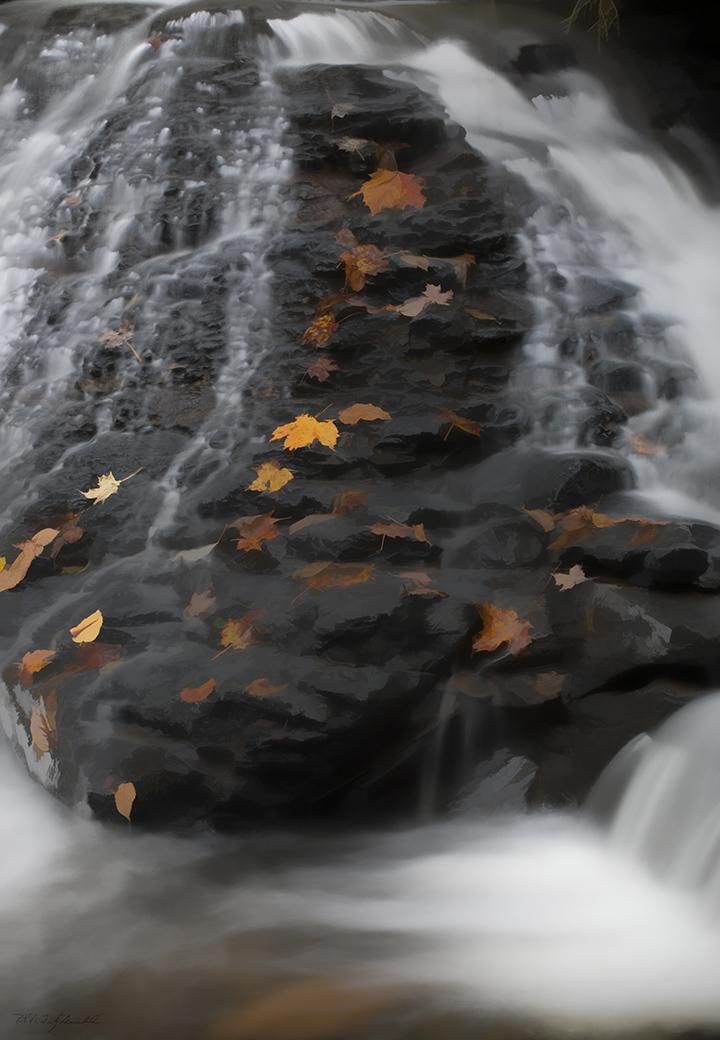 Dingmans Creek 2