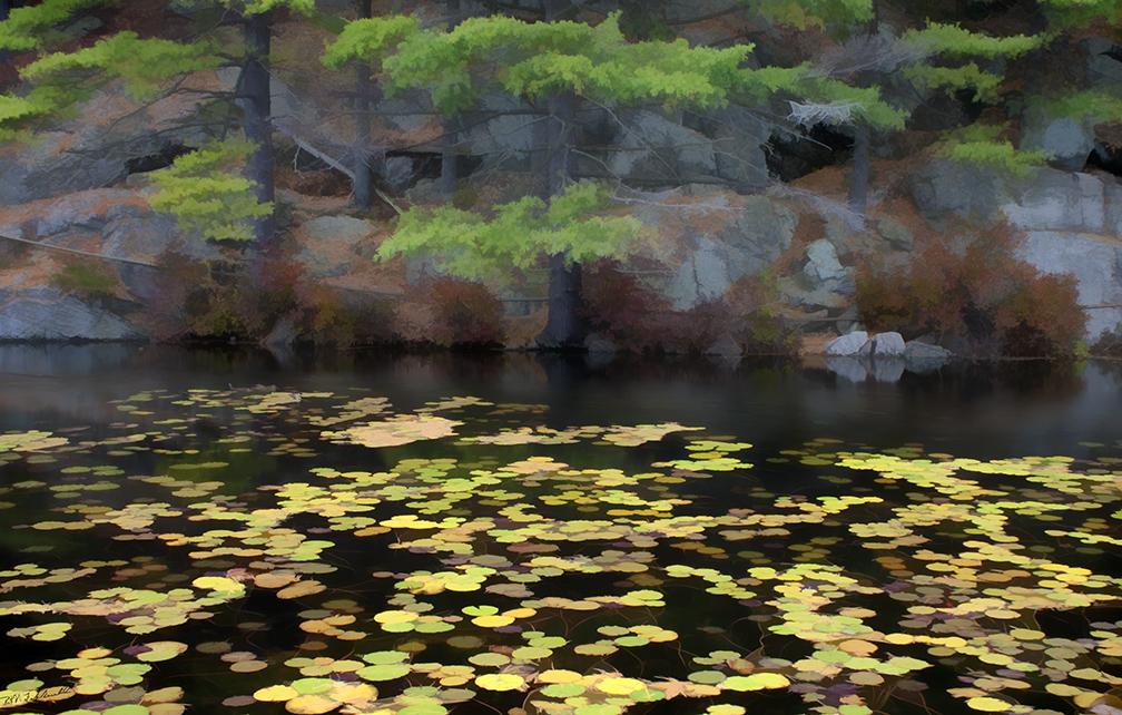 Mermaid Pond II