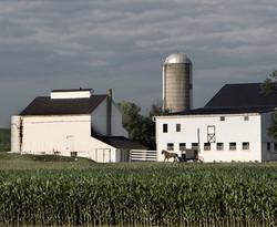Rural Reprise