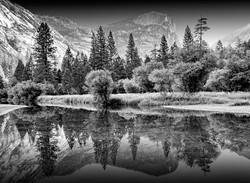 Reflection #2