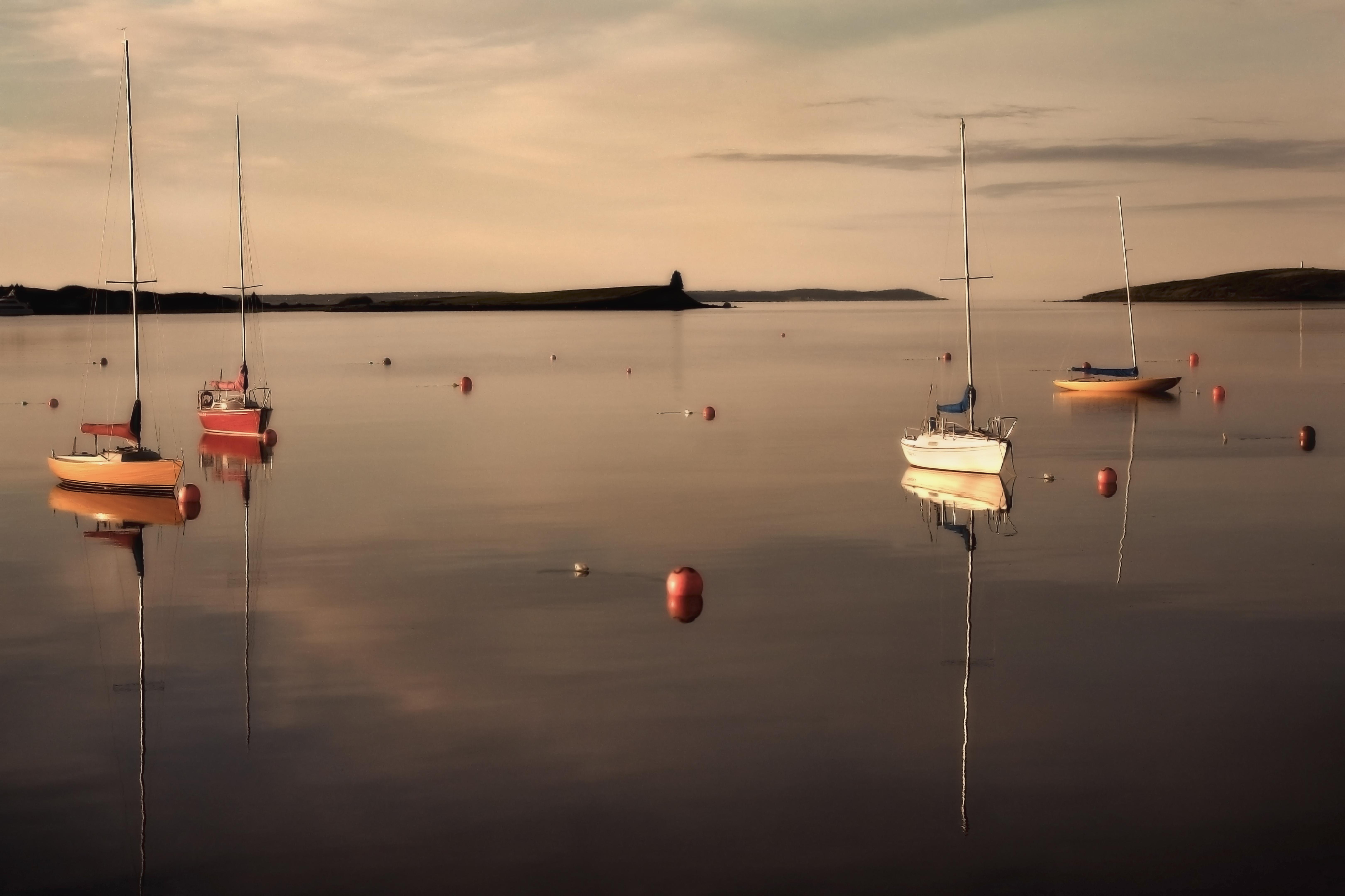 Sailboat Morning
