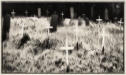 Ye Ol' Graveyard
