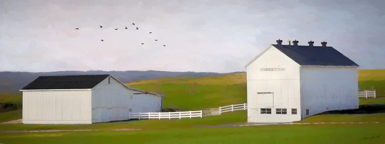 white barns