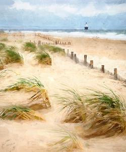 Beach Combing