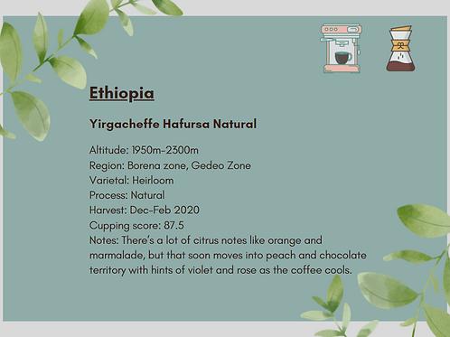Single Origin Filter - Ethiopia