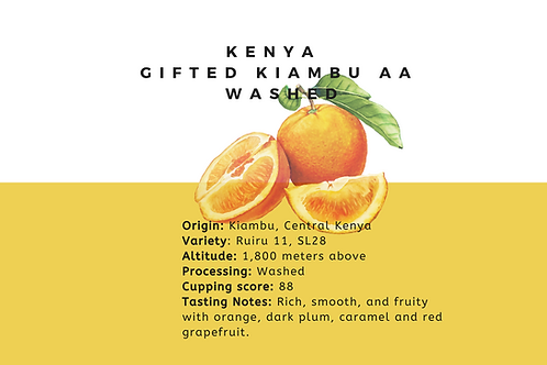 Single Origin Filter -Kenya