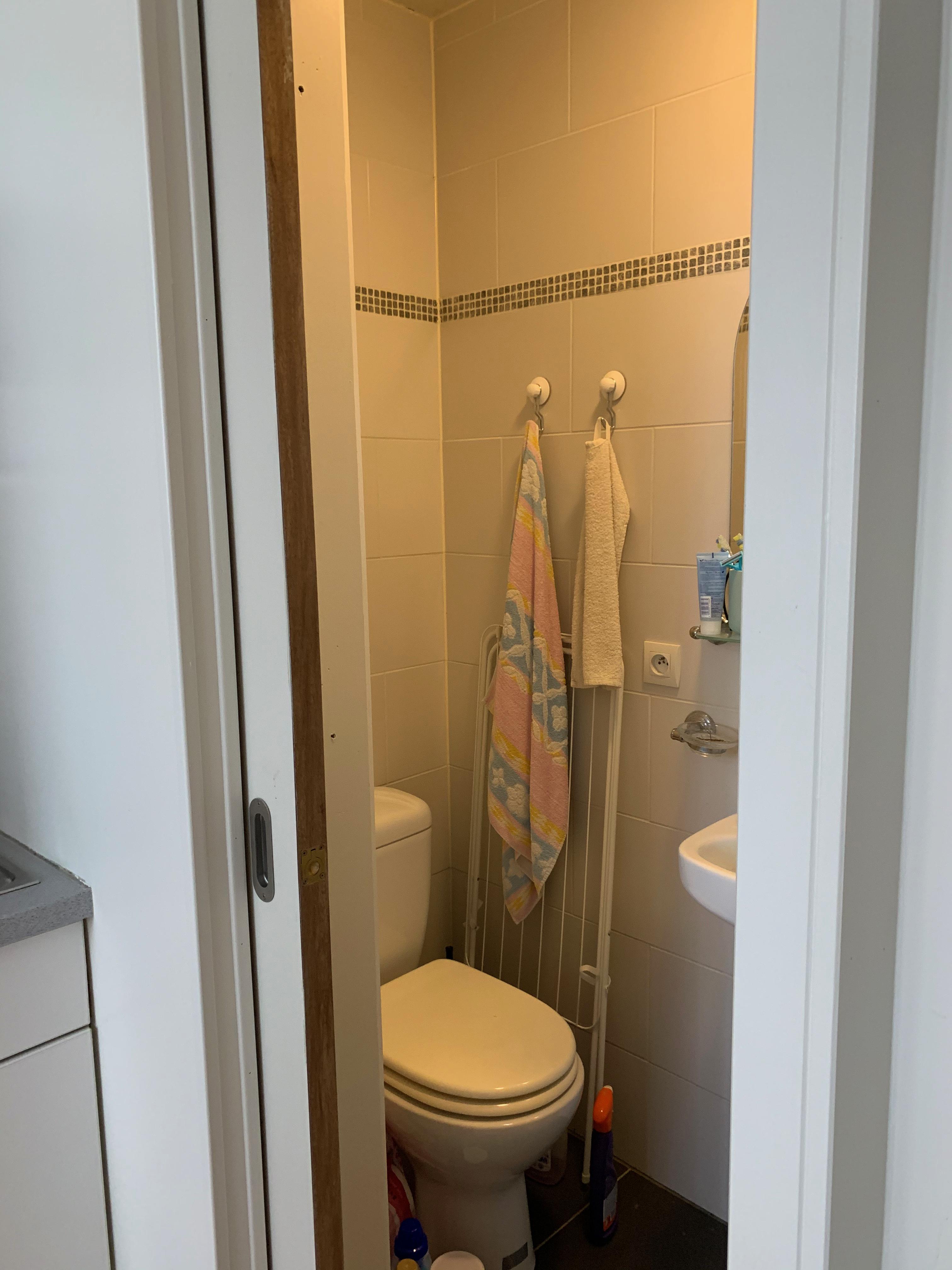 LP2-0201 - toilet