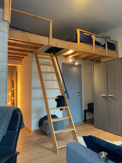 DB5-0202 - trap, hoogslaper