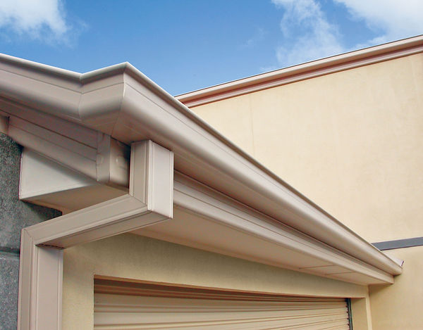 downpipe and quad gutter.jpg
