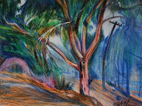 Canberra in the Bushfire, Original Crayola Crayon, Vintage Frame, A4