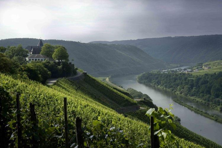 Wijnronde van Duitsland: topmasterclass