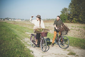 land Cycle