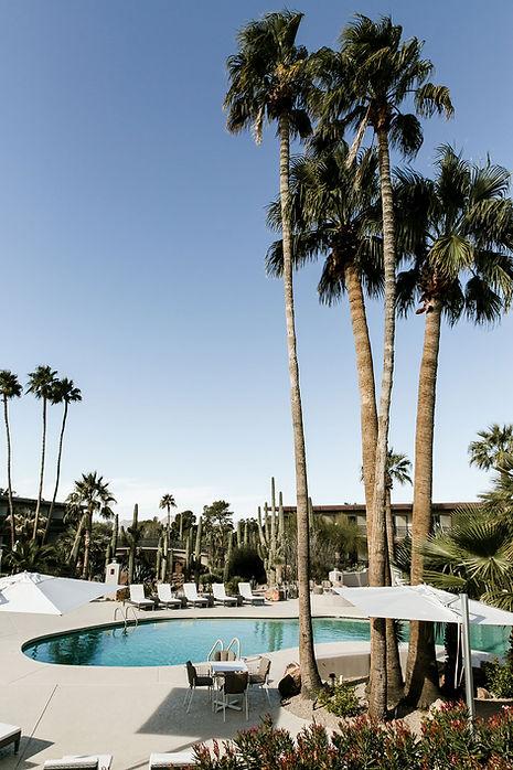 resort environment 5.jpg