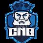 CNB_e-Sports_Clublogo_square.png