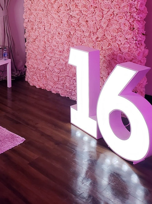 3ft Marquee Numbers Priced Per Number