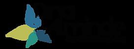 Dina logo-01.png