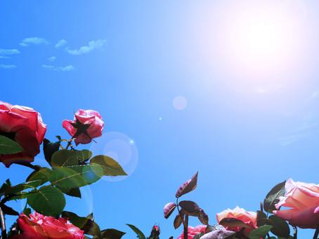 【夏の冷え】冷えている時、身体はどうなっている?