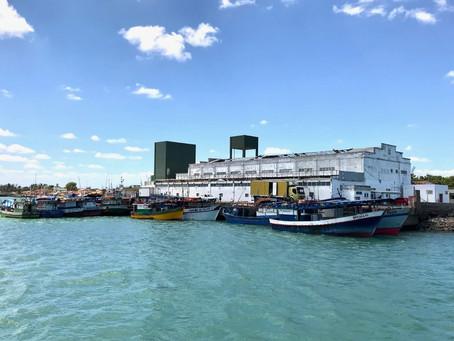 Docas do Ceará mira concessão do Terminal Pesqueiro de Camocim em 2021