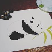 Plentiful Panda