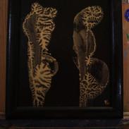 Golden Coral II
