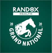 The Grand National 2020 Horse Racing